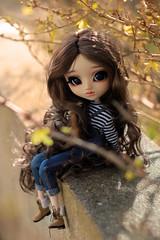 * Jamie * (.Corarock.) Tags: doll pullip blythe obitsu wig monique clear lan