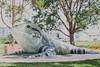 Port Macquarie - big water dragon (burntfeather) Tags: portmacquarie port australia newsouthwales billlawrence bigwaterdragon kooloonbungcreekreserve bigthingsofaustralia playfeature
