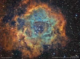 NGC2237 -  Rosette Nebula - Hubble Palette Technique