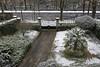 _DSC3781_DxO (Alexandre Dolique) Tags: d850 nikon etampes sous la neige under snow alexandre dolique
