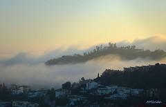 Nieblas en Málaga (amerida59) Tags: málaga nieblas