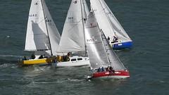 Les Kiwis sont des oiseaux de mer ;-) (♥ L'humoureuse :-)) Tags: waitemataharbour auckland newzealand cityofsails sailing voiliers course