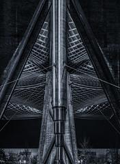 Roof, vertical (katrin glaesmann) Tags: hannover niedersachsen lowersaxony laatzen messegelände blackandwhite monochrome bw expodach woodenstructure architekturherzogpartnerhannsjörgschradearchitektthomasherzogarchitektrolandschneiderarchitekt