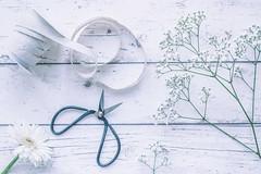 56/365: Cut flowers (judi may) Tags: 365the2018edition 3652018 day56365 25feb18 flowers white whiteflowers gypsophila gerbera scissors bonsaiscissors ribbon flatlay stilllife canon7d 50mm highkey