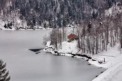 Detalj s Lokvarskog jezera - pod snijegom (MountMan Photo) Tags: lokvarskojezero jezero lokve gorskikotar primorskogoranska croatia landscape snijeg snow zima winter led