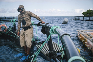 FISH FOR ALL: A young Woman Helps Reel in a Better Future for the Marshall Islands