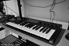 Korg Kronos & Co - 09 Januar 2017 - 08 (florentgold) Tags: florent glod floglod florentglod lëtzebuerg lëtzebuerger lëtzebuergesch luxemburg luxemburger luxembourgeois luxembourgeoise luxembourgeoises luxembourg letzebuerg grandduchy grandduché grossherzogtum 2018 korg music gear synthesizer moog kronos 09 januar kross moogerfooger akai workstation keyboard