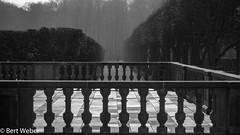 Unbenannt (weber.bert) Tags: 169 brühl schlosspark analogefotografie blackwhite inbiancoenero noiretblanc grauwertabstufungen sw