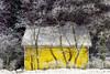 Kuura (Olli Tasso) Tags: yellow house ice jää kuura cityscape maisema kaupunkimaisema nature luonto puu tree tampere suomi finland nekala winter freeze frozen jäätynyt jäinen kylmä cold talvi tammikuu january night streetlights katuvalo yö
