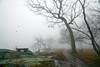 Foggy Morning (JMS2) Tags: fog weather bench park path misty winter stark rocks shoreline scenic