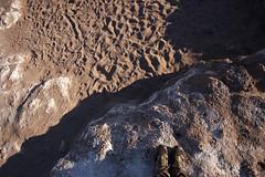 "Atacama e Salar Uyuni (Malu Green!) Tags: atacama salar deserto desert bolivia chile sanpedrodeatacama uyuni salardouyuni montanha hills vulcão volcano laguna lake lago lagoa flamingo valledelaluna valledelamuerte trekking janela window ventana cidade ciudad city gelo geleira ice hielo ""laguna de hielo"" ""hielo laguna"" selfie selfeet friends"