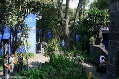 IMG_8438 (TomTravelExtreme) Tags: meksyk mexico dc frida kahlo la casa azul