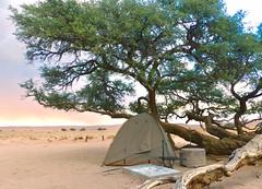 Driving through the Namib Desert (197travelstamps) Tags: namibia africa namib desert travel 197travelstamps adventure dune sossusvlei sesriem naukluft national park