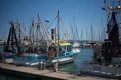 Alongside at Scarborough (noompty) Tags: 250 brisbane makroplanar moretonbay scarborough water zk zeiss blueskies coast carlzeiss pentax k1 on1pics photoraw2018 fishing boat
