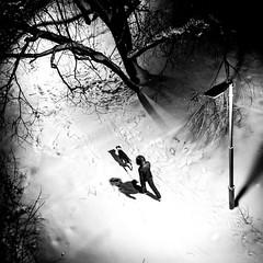 Следы / Track (Yuri Balanov) Tags: winter winterlight bw blackandwhite bwphoto russia park urban people night pentax pentaxk5iis snow tree trail landscape