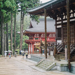 A rainy day at the Garan buddhist temple complex in Mt. Koya, Japan | 高野山 | PA161007 thumbnail