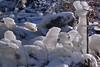 ice age (Wolfgang's digital photography) Tags: iceage eis natur panasonicdmcfx01