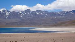 161 Laguna Miscanti (roving_spirits) Tags: chile atacama atacamawüste atacamadesert desiertodeatacama désertcôtier küstenwüste desiertocostero coastaldesert