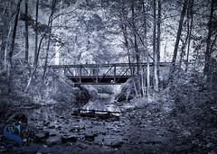 mono bridge and water (Singing With Light) Tags: 2017alpha6500 27th eisenhowerpark mondopondtrails milford mirrorless october singingwithlight sonya6500 morningwalk photography pondoponds singingwithlightphotography sony sunrise
