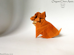 Origami Chien Assis - Barth Dunkan. (Magic Fingaz) Tags: anjing barthdunkan chien chó dog hond hund köpek origami perro pies пас пес собака หมา 개 犬 狗