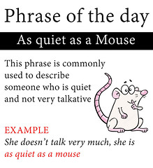 quiet as a mouse (phrase of the day)