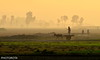 TOWARDS WORK (PHOTOROTA) Tags: abid photorota flickr pakistan punjab mornning nikon