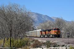 Winter on Cajon (GRNDMND) Tags: trains railroads bnsf cajoncreek cajonpass cajon california