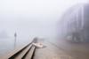 (monsieur ours) Tags: vietnam sapa city ville rue street fog brouillard couleur color