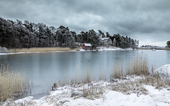 Winter wonderland (Mika Laitinen) Tags: balticsea canon5dmarkiv europe finland helsinki leendgrad scandinavia uutela cliff cloud cold color dreamscape landscape nature outdoor rock sea shore sky snow tree winter