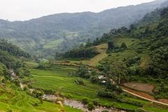 Z Cao Bang do Bao Lac (zcesty) Tags: řeka vietnam21 terasa rýže pole krajina vietnam dosvěta caobằng vn