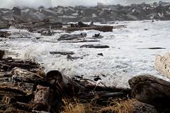 Full Wave (Mïk) Tags: swellday january182018 beach hightide 30ftswells pacificocean oceanshoreswa washington notheotherwashington graysharbornorthjetty graysharbor