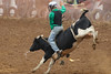 343A7180 (Lxander Photography) Tags: midnorthernrodeo maungatapere rodeo horse bull calf steer action sport arena fall dust barrel racing cowboy cowgirl