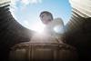 頭大仏殿 (Ming Yam) Tags: hokkaido buddha blue 逆光 佛 japan sapporo 北海道 life lifestyle canon zeiss 21mm 5d2 lightroom zeissdistagont21mmf28ze distagont2821 carlzeiss