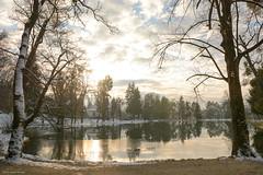 (Laszlo Horvath.) Tags: lake sunset sun winter snow water felsőtárlány hungary nikond7100 sigma1835mmf18art