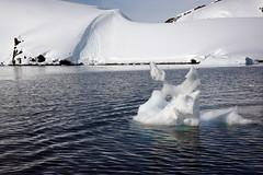 Brown_2017 12 11_3115 (HBarrison) Tags: harveybarrison hbarrison antarctica antarcticpeninsula paradiseharbor brownstation arctic antarctic arcticantarctic