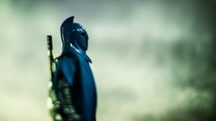 Awaiting the Storm (3rd-Rate Photography) Tags: senateguard blueguard republicguard starwars blackseries hasbro toy toyphotography actionfigure 50mm 5dmarkiii canon nikon freelens lenswhacking elens jacksonville florida 3rdratephotography earlware 365