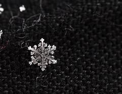 Snowflake (Prajwalan Karanjit) Tags: snowflake detail snow winter cold canon naturesart