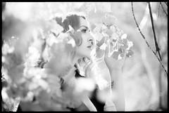 Cassandra (Christopher M Ebarb) Tags: portrait bw blackandwhite bright leaves tree beautiful film 35mmfilm ilford panf 50 50mm nikkor nikon nikomat slr
