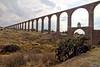 Cactus for the aqueduct (Chemose) Tags: mexico mexique nopaltepec aqueduc aqueduct padretempleque landscape paysage cactus hdr canon eos 7d mars march