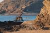 Un Tour des Remparts (saintmalojmgphotos) Tags: saintmalo 35400 35 mer marée maritime merenhiver plage