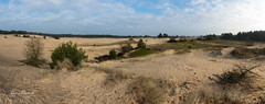 Kootwijkerzand (Leo Kramp) Tags: 2018 kootwijk panoramafoto 9fotos panoramaset kootwijkerzand veluwe wandelen gelderland nederland nl flickr