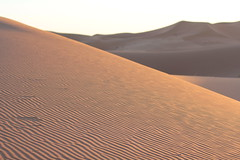 Marokko Dez17 Jan18 124 (izzaga) Tags: marokkodez17jan18 sand dunes sahara desert morocco