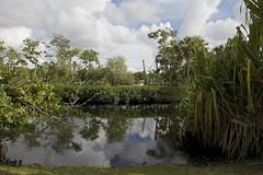 DSC_5723 (ucumari photography) Tags: ucumariphotography naples florida zoo january 2018