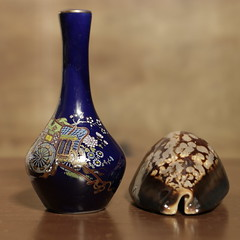 Perfume bottle and polished Cowrie shell (N.the.Kudzu) Tags: home tabletop stilllife perfume bottle seashells canon70d
