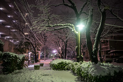 DSC_3801 (Camera Freak) Tags: 180123snowinkameari snow january 2018 nikon d810 night