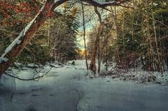 Peaceful (Paul B0udreau) Tags: canada d5100 layer nikon nikond5100 ontario paulboudreauphotography jordan ballsfalls water sunlight ice winter photoshop nikkor1855mm netartii netartiispecialaward galleriadarteexcellence syb