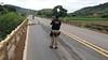 Animal morto na pista provoca acidente na BR 116 entre Ubaporanga e Inhapim, MG (portalminas) Tags: animal morto na pista provoca acidente br 116 entre ubaporanga e inhapim mg