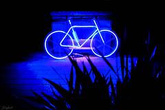 Blue Light Bike (Sebastian Sighell) Tags: color colour blue lights night london lumierelondon2018 lumiere illumination street streetart urban installation bike bicycle fujifilm