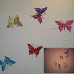 No Edits Originals... These are the butterflies from the past two days. thumbnail