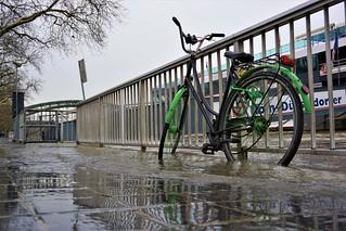 Rheinhochwasserfahrrad